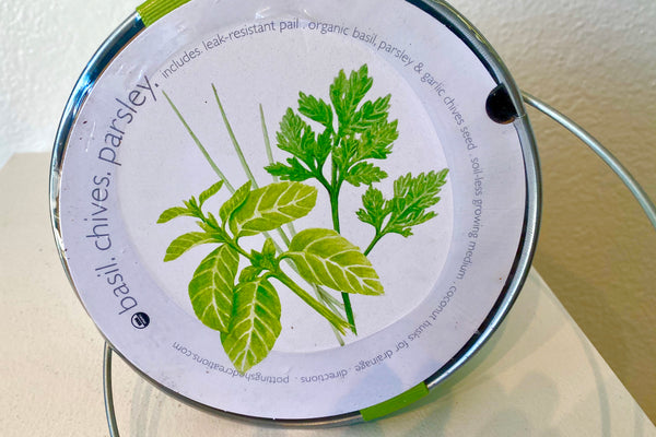 This leak-resistant silver pail includes seeds for organic herbs; basil, chives, and parsley in a soil-less growing medium with coconut husks for drainage. Directions included.