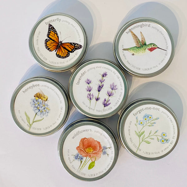 These seeds come in a shiny tin can perfect to start your own garden in six different varieties for flowers and even butterflies and hummingbirds.