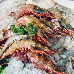 WILD WHOLE KING PRAWNS