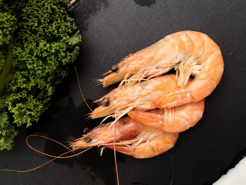 Shell-On Cooked King Prawns