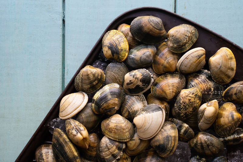 FRESH CLAMS ONLINE FISHMONGER