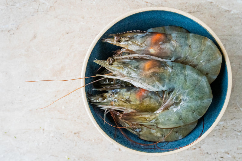 KING PRAWNS (SHELL ON)