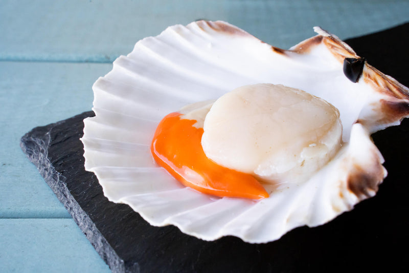 Scottish Hand Dived King Scallops