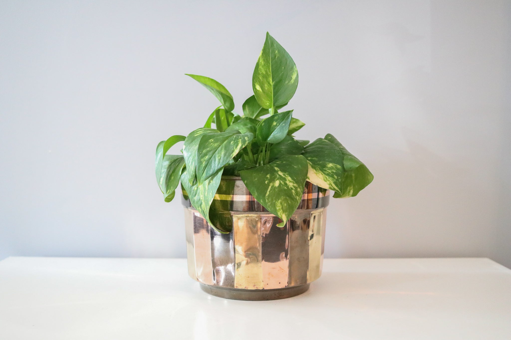 Brass+Copper Planter