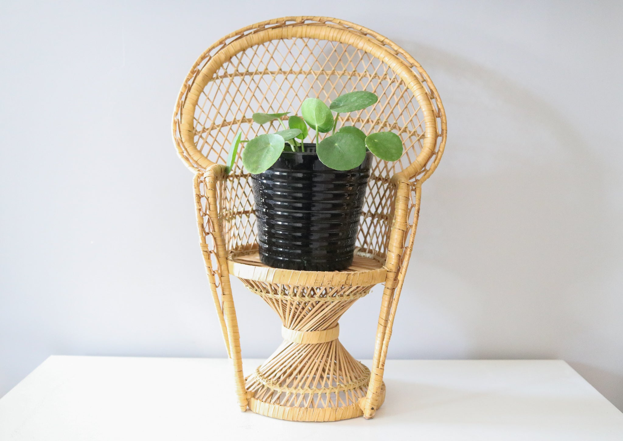 Wicker Peacock Chair Planter
