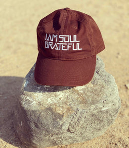 Soul Essential Hat in Earth