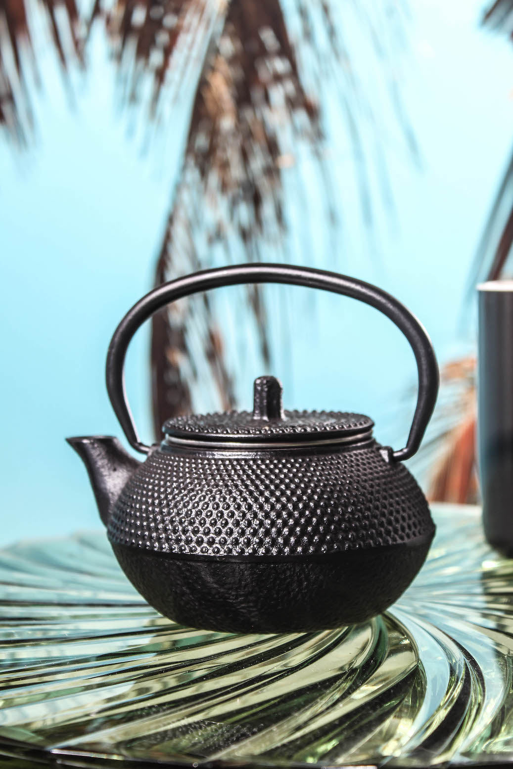 Black Cast Iron Teapot with Filter