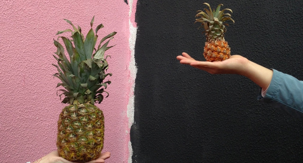 Two pineapples being compared, one big, one small.