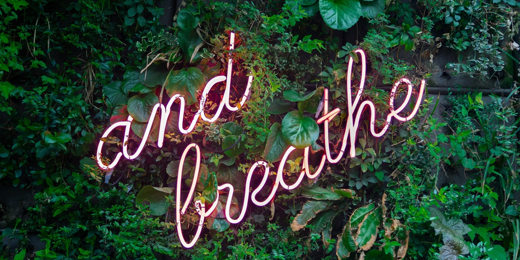"""A pink neon sign saying """"and breathe"""" surrounded by plants."""