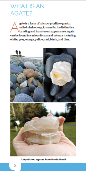 Haida Gwaii Agate Collecting Pocket Guide (with Agate included)