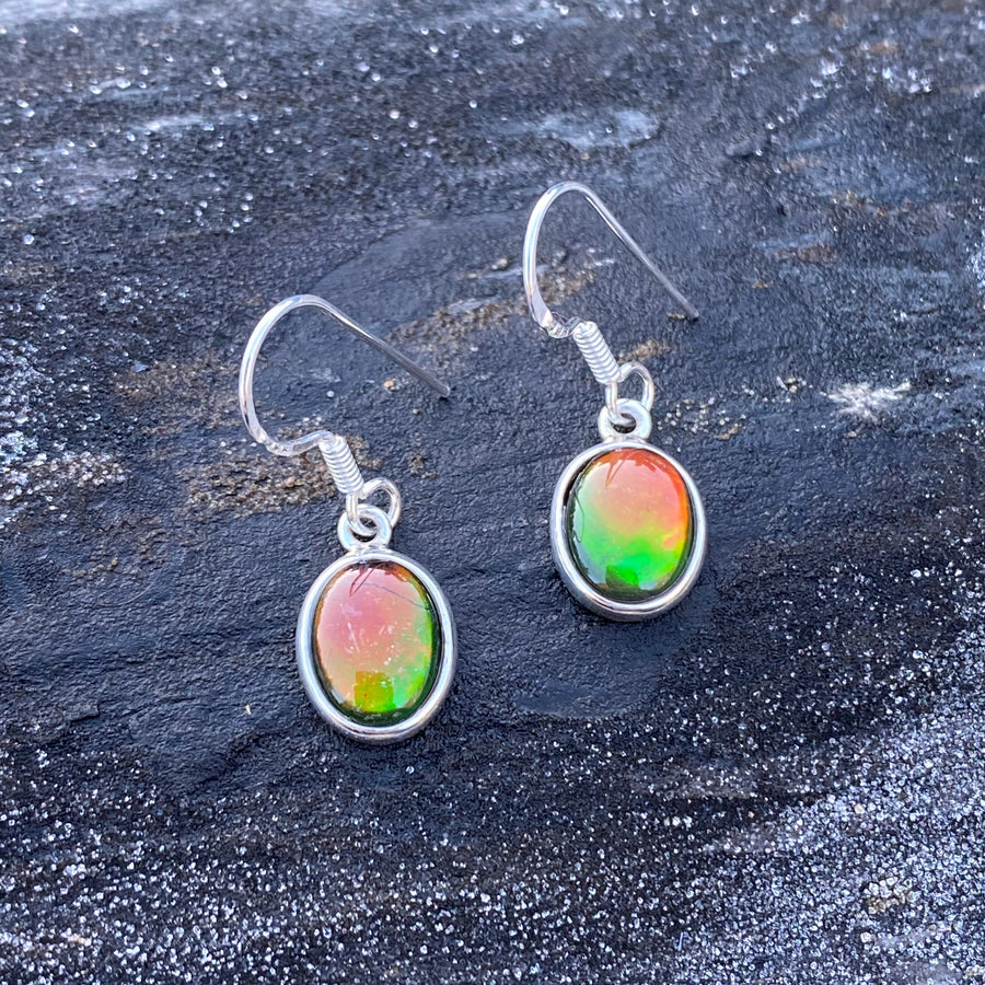Ammolite with Silver Earrings