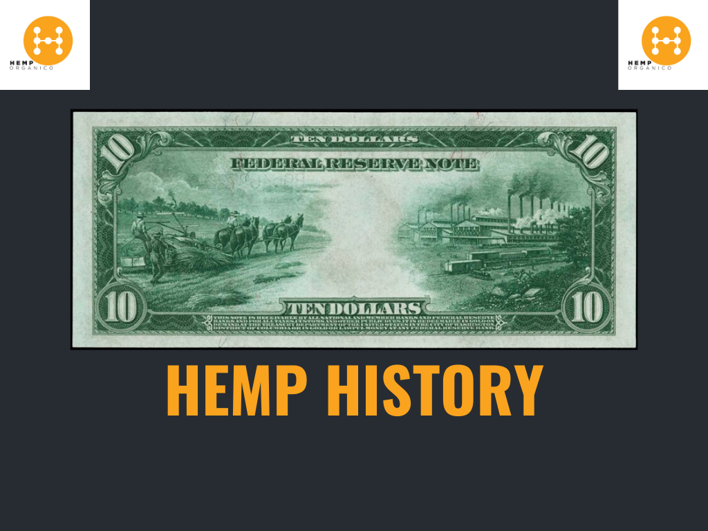 The History of Hemp and Terpenes