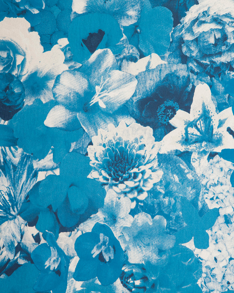 Full Bloom - Delphinium Wallpaper