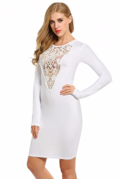 Lace Long Sleeve Pencil Bodycon Dress