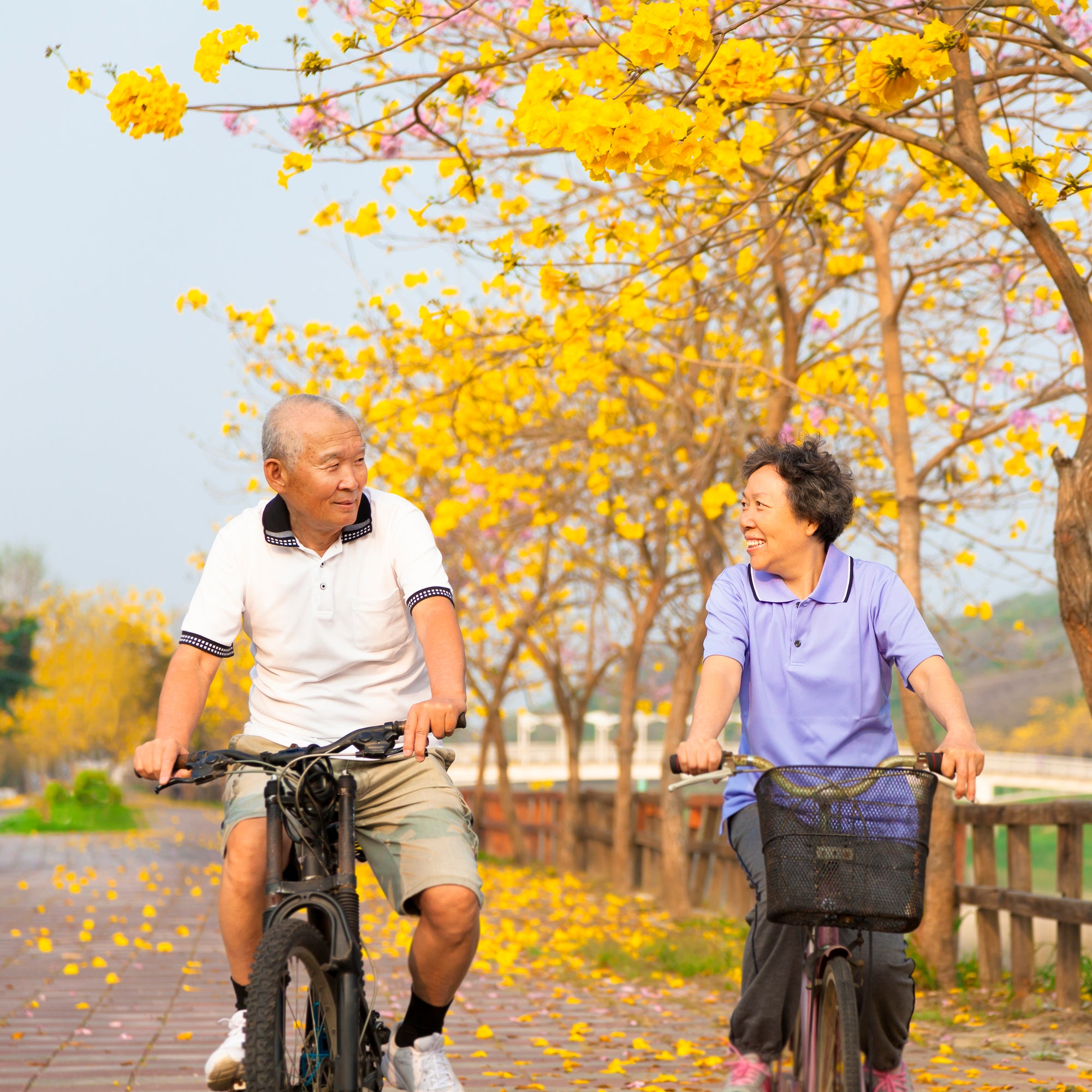 8 Tips For Senior Cycling