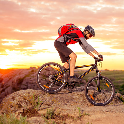 Bicycling Phoenix: 10 Best Bike Trails