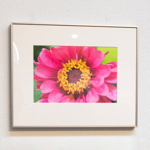 flower pink product image 1
