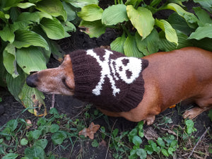 Halloween hat for dog with skull and cross bones