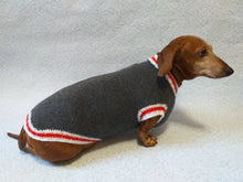 Load image into Gallery viewer, Knitted warm dachshund sweater, gray dog sweater with stripes