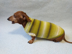Knitted clothes for small dog, clothes for dachshunds, sweater for dog