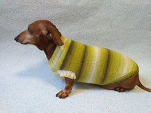 Load image into Gallery viewer, Knitted clothes for small dog, clothes for dachshunds, sweater for dog