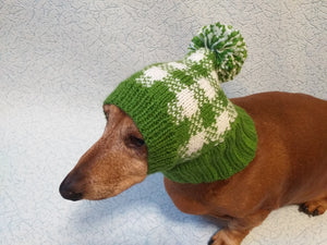 Green knitted check hat for dachshund or small dog