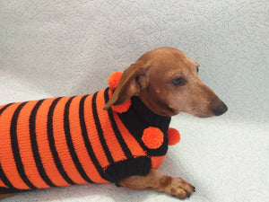 Orange and black striped knitted sweater with pompoms for dachshund or small dog