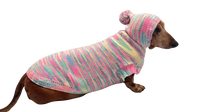 Hoodie multi-colored for dachshund or small dog, knitted hoodie for dog