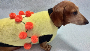 Sweater for a dog lot of pompons, sweater Halloween for dog