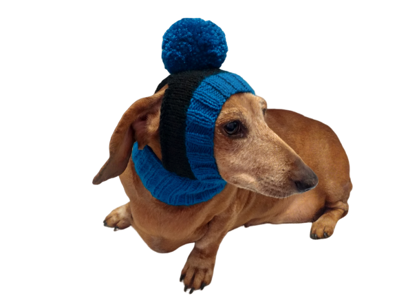 Warm hat for dog or cat, hat for dachshund