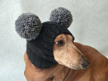 Load image into Gallery viewer, Hat for miniature dachshund with two pompons