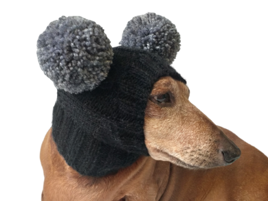 Hat for miniature dachshund with two pompons