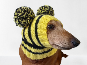 Bee knitted hat for dachshund with two pompons