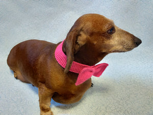 Knitted collar bow for dog or cat
