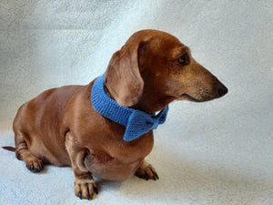 Bow collar for dog or cat