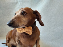 Load image into Gallery viewer, Knitted collar bow for dog cat