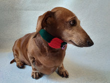 Load image into Gallery viewer, Christmas dog or cat collar