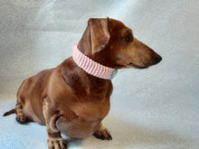 Load image into Gallery viewer, Knitted collar for dog or cat