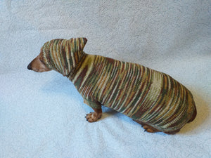 Military hooded sweater for dachshund or small dog, camouflage hoodie for dachshund