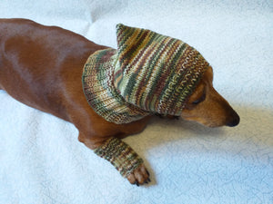 Camouflage kit hat and leggings for dogs, Military kit for dachshunds