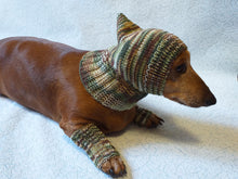 Load image into Gallery viewer, Camouflage kit hat and leggings for dogs, Military kit for dachshunds