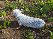 Load image into Gallery viewer, Military hooded sweater for dachshund or small dog, camouflage hoodie for dachshund