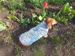Knitted hoodie sweater for dog, hoodie for miniature dachshund