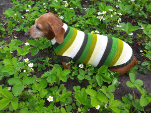 Dachshund clothes striped sweater