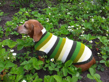 Load image into Gallery viewer, Dachshund clothes striped sweater