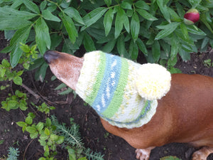 Warm winter hat with pompom for small dog