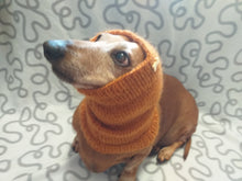 Load image into Gallery viewer, Knitted angora wool snood for dog, hat scarf snud for dog, dog snood, dachshund snood