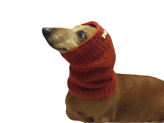 Knitted angora wool snood for dog, hat scarf snud for dog, dog snood, dachshund snood