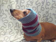 Load image into Gallery viewer, Dachshund snood handmade stripes, scarf snood hat for dogs