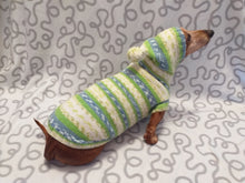 Load image into Gallery viewer, Clothing for dachshund or small dog with sweater with hoodie